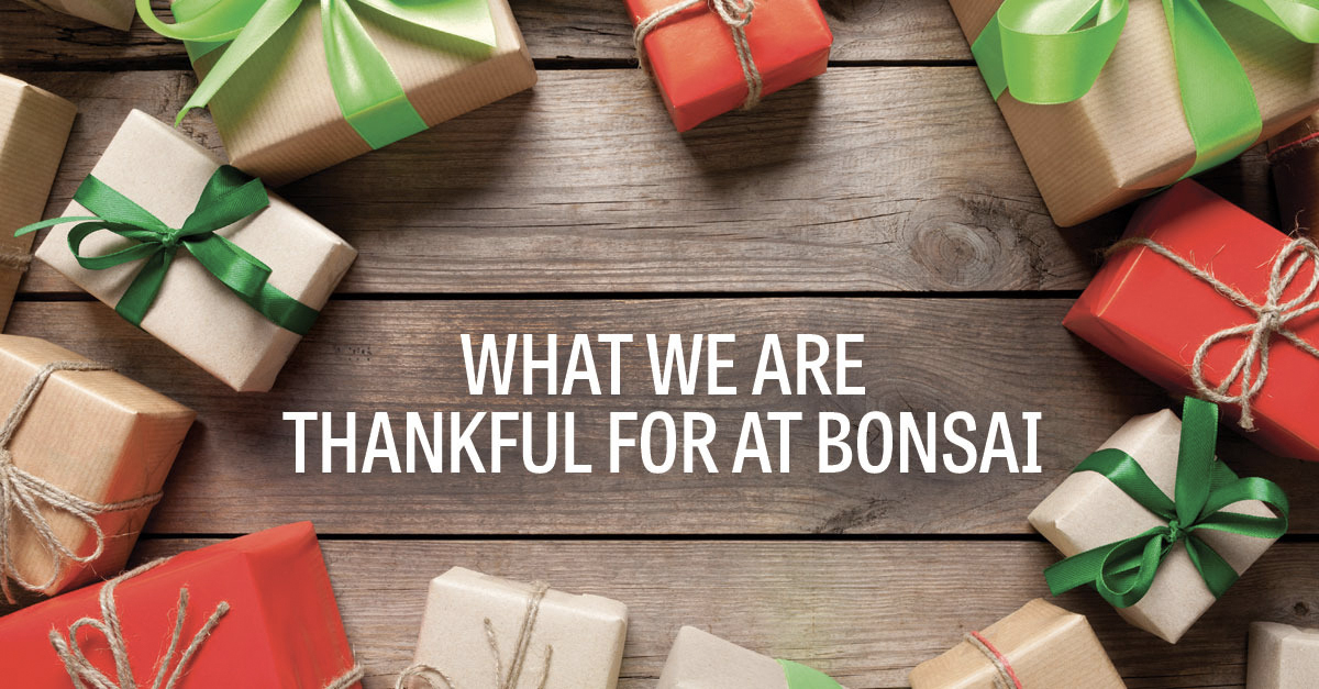 Bonsai Media Group Thanksgiving Seattle WA